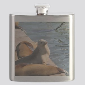 Help Us Flask