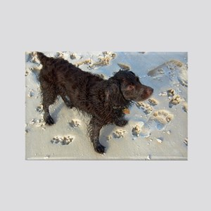 Scully with Pawprints Rectangle Magnet