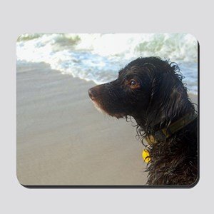 Scully Beach Profile Mousepad