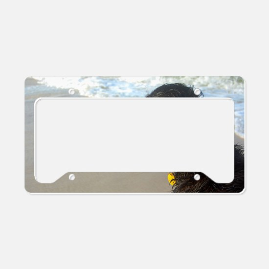 Scully Beach Profile License Plate Holder