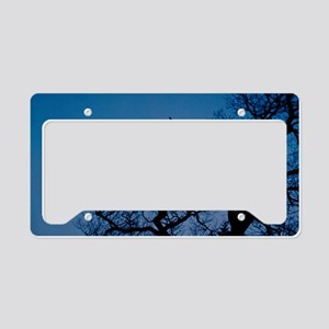 Catch the Moon License Plate Holder