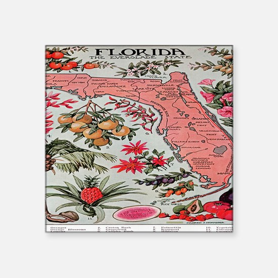 "Vintage Florida Fruit Flowe Square Sticker 3"" x 3"""