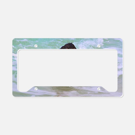 Halle Out of the Ocean License Plate Holder
