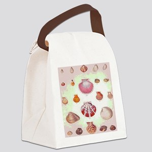 Vintage Seashell Illustration Canvas Lunch Bag
