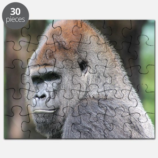 Mrithis face Puzzle