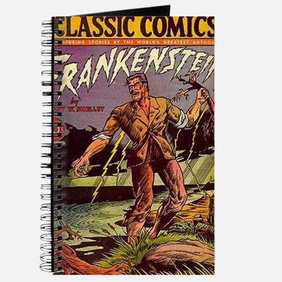 frankenstein journal notes Frankenstein double entry journal wait just a minute here in order to access these resources, you will need to sign in or register for the website (takes literally 1 minute) and contribute 10 documents to the coursenotes library.