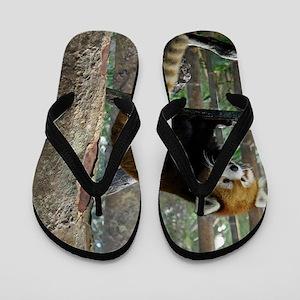 Xia Flip Flops