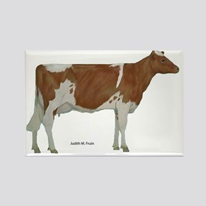 Guernsey Cow Rectangle Magnet