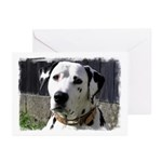 ...Dalmatian 03... Greeting Cards (Pk of 10)