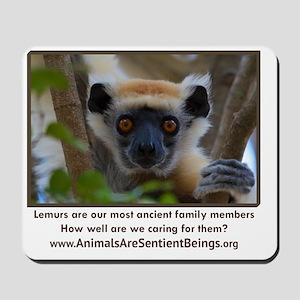 Golden Crowned Lemur Face Mousepad