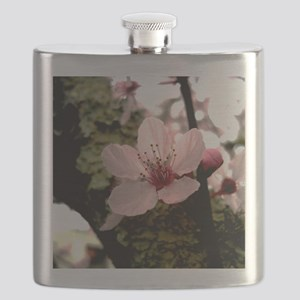Cherry Blossom, 1 Flask
