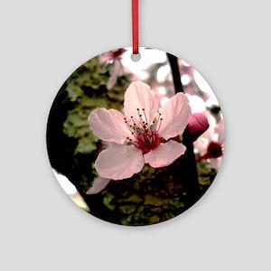Cherry Blossom, 1 Round Ornament