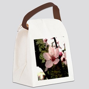 Cherry Blossom, 1 Canvas Lunch Bag
