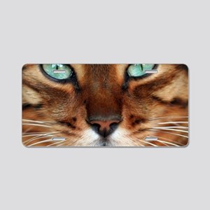 Paws and Wiskers Aluminum License Plate