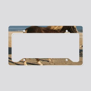 Rocky and Stroll Beach License Plate Holder