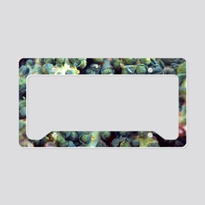 Brussel Sprouts License Plate Holder