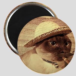 Gato w/Cigar Magnet