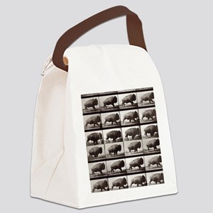 Tiny Buffalo Canvas Lunch Bag