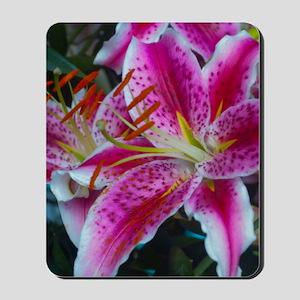 Stargazer Lily Framed Panel Print-2700wx Mousepad