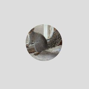 Squirrel Greeting Mini Button
