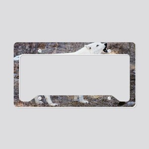"""Lost  Wolf"" License Plate Holder"