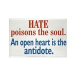 Hate Poisons the Soul Rectangle Magnet (100 pack)