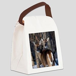 Curious Does D1268-112 Canvas Lunch Bag