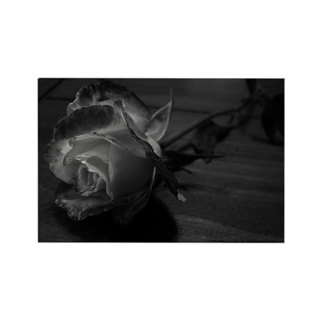 Black and White Rose Rectangle Magnet