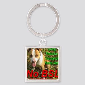 No BSL Square Keychain