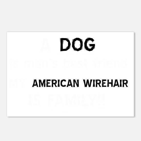 American Wirehair cat des Postcards (Package of 8)