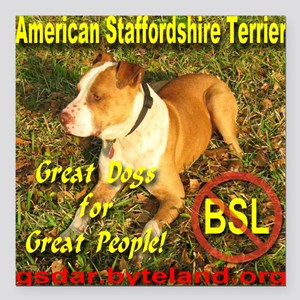 """American Staffordshire T Square Car Magnet 3"""" x 3"""""""