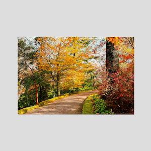 Autumn colors Rectangle Magnet