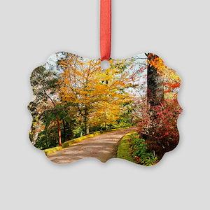 Autumn colors Picture Ornament