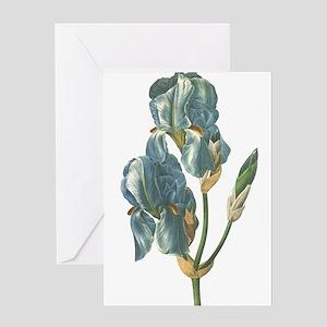 Redoute Iris Greeting Cards