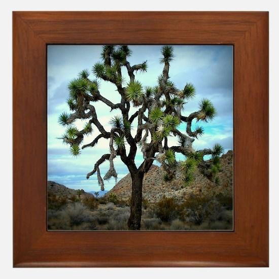 Joshua Tree Framed Tile
