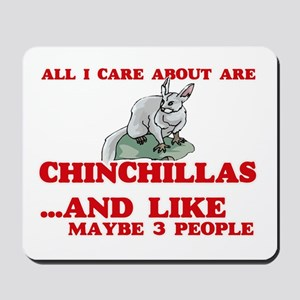 All I care about are Chinchillas Mousepad