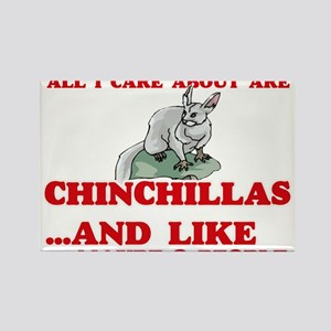 All I care about are Chinchillas Magnets