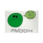 Streptococcus Rectangle Magnet (10 pack)