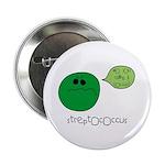 Streptococcus 2.25