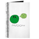 Streptococcus Journal