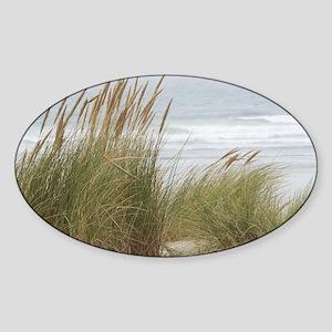 wind-in-the-grasses-square Sticker (Oval)