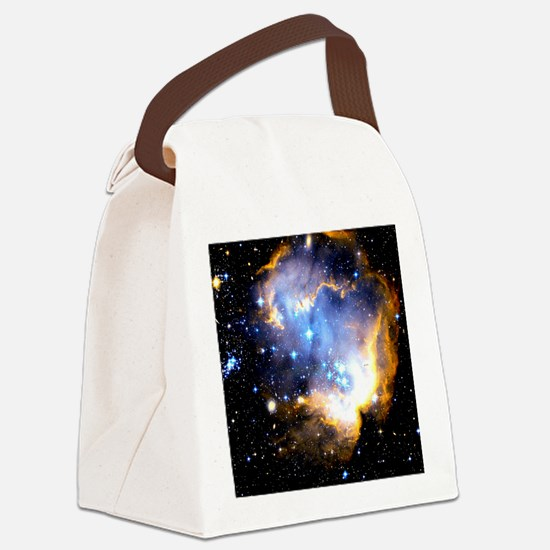 Star Cluster Canvas Lunch Bag