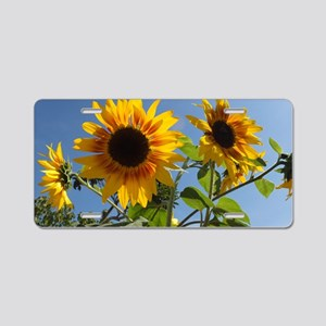 Sunflowers Style 1 Aluminum License Plate