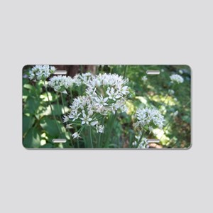 Fall Chive Blossoms Aluminum License Plate