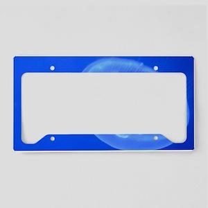 Moon Jellyfish 2 License Plate Holder