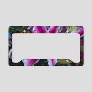 Stargazer Lily License Plate Holder