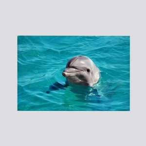 Dolphin Blue Water Rectangle Magnet