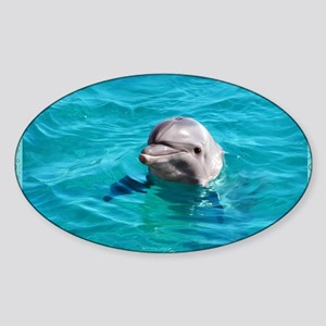 Dolphin Blue Water Sticker (Oval)