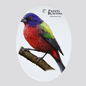 Painted Bunting Oval Ornament