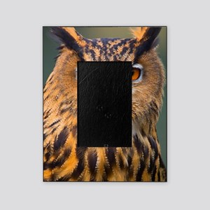 Eagle Owl Picture Frame
